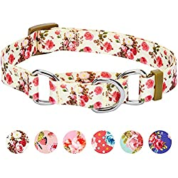 Blueberry Pet Spring Scent Inspired Rose Print Safety Training Martingale Dog Collar, Ivory, Small, Heavy Duty Adjustable Collars for Dogs