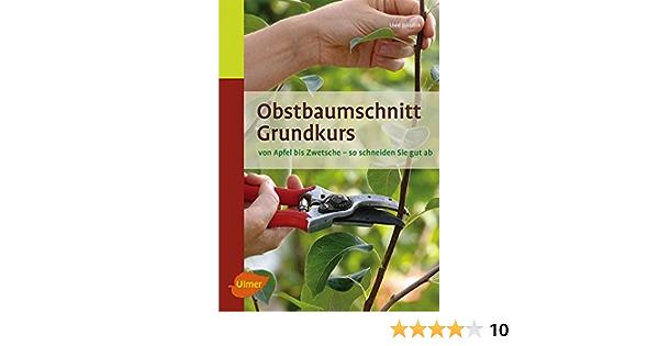 Obstbaumschnitt Grundkurs Von Apfel Bis Zwetsche So Schneiden Sie Gut Ab Amazon De Jakubik Uwe Bucher