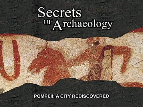 Pompeii: A City Rediscovered (Aldo-computer)