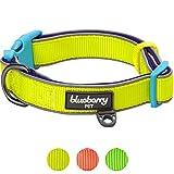 Blueberry Pet Neue Sommerhoffnung 1,5cm S 3M Reflektierendes Neon Gelb Gepolstertes Halsband für Kleine Hunde