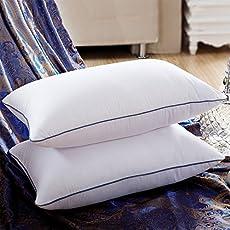 Avekin Stylish Blue Dhori Microfiber Pillow Set of 2 (17x27-inch, White)