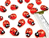 HOMETOOLS.EU - 20 Stück - Lustige bunte Marien-Käfer Glücksbringer 3D Holz Sticker selbst-klebend, Aufkleber, echt Holz, bemalt | 20er Pack
