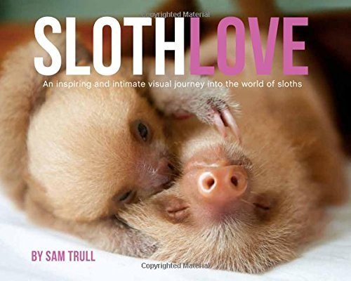 Slothlove by Sam Trull (2016-04-19)