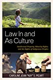 Law In and As Culture: Intellectual Property, Minority Rights, and the Rights of Indigenous Peoples (Law, Culture, and the Humanities Series)