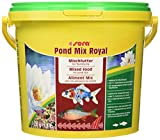 sera 07102 pond mix royal 3800 ml - Futtermischung aus