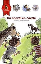 Cheval et Compagnie, Tome 3 : Un cheval en cavale (cheval, poney, sauvage, frère)