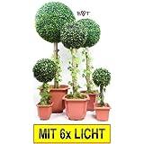 Árbol de caja con/sin solar iluminación, grandes + Caja grande esfera de árbol Planta Artificial, de plástico para casa y jardín–Con tronco de madera auténtica