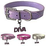 Lushpetz Hundehalsband mit gratis Diva Charm aus Leder in den Größen XS, Small, Medium und Large (Mittel, Lila)
