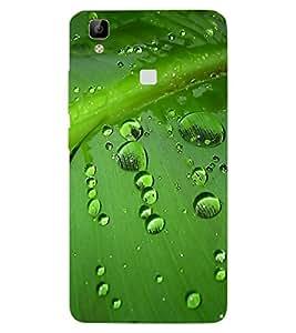 ColourCraft Water Drops on Leaf Design Back Case Cover for VIVO V3 MAX