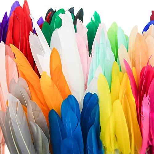 TOAOB 250 Stück Bunte Indianer Federn natürliche Feder 10-15cm läng Ideal für DIY Handwerk - Party Bei Der Darstellung Und Kostüm
