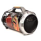Best JBL Amplificador Para Subwoofers - LEENY Mini Altavoces Audio Portátil Coche Estéreo Subwoofer Review
