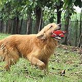 ♣ Tianya - Sound Chew Biting Star Molar Tracing Hund Spielzeug für kleine Heimtierbedarf