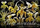 Flora miracula - Die wundersame Welt des Fotografen Olaf Bruhn (Wandkalender 2019 DIN A2 quer): Einer der wohl ungewöhnlichsten und aufwändigsten ... (Monatskalender, 14 Seiten ) (CALVENDO Kunst)