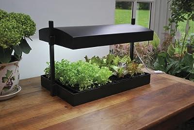 forestfox Indoor Micro Grow Light Garden Plant Propagator Hydroponics Kit All Year Growth