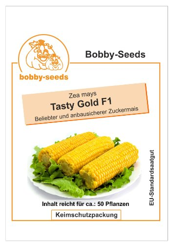 Bobby-Seeds Mais Samen Tasty Gold F1 Zuckermais Portion
