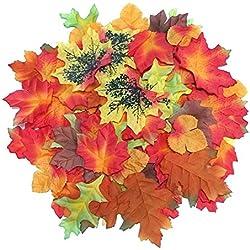 Shopping - Ratgeber 510nVh-V1pL._AC_UL250_SR250,250_ Geniessen Sie die farbenfrohe Jahreszeit mit Herbst-Deko