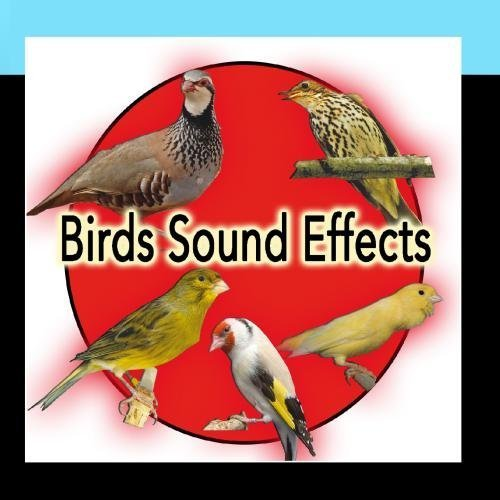 Birds and Nature Sound Effects: Partridge, Spanish Timbrado Canary, Goldfish, thrush, Roller by Nature Sound Effect (Natur-roller E)