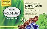 L'Angelica Tisana Funzionale Dopo Pasto - Pacco da 10 x 40 g