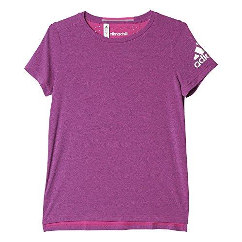 Adidas Climachill Course à Pied Women's T-Shirt - SS16 Violet/Argent