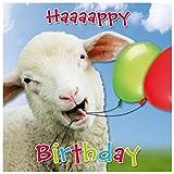 Susy Card 40010687 Geburtstagskarte