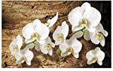 Fototapete Orchideen Blumen auf Holz Wand Wandbild (1017ve), 312cm x 219cm (WxH)