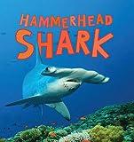 Discover Sharks: Hammerhead Shark