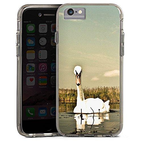 Apple iPhone 6 Bumper Hülle Bumper Case Glitzer Hülle Schwan Swan Vogel Bumper Case transparent grau