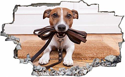 DesFoli Hund Dog 3D Look Wandtattoo 70 x 115 cm Wanddurchbruch Wandbild Sticker Aufkleber C488