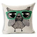 ZGMWXW@ 2er Set Baumwolle Leinen Kissenbezug Brille Eule,Serie (45x45 cm Kissenhülle, ideal als Kinderzimmer Dekokissen)