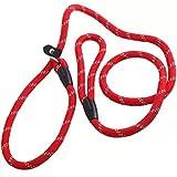 Vi.yo Dog Training Blei Nylon verstellbare Loop Slip Leine Seil Blei und Kragen 1.2M (Rot)