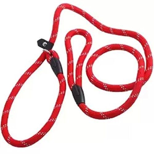 VI. yo entrenamiento perro plomo cuerda nylon lazo