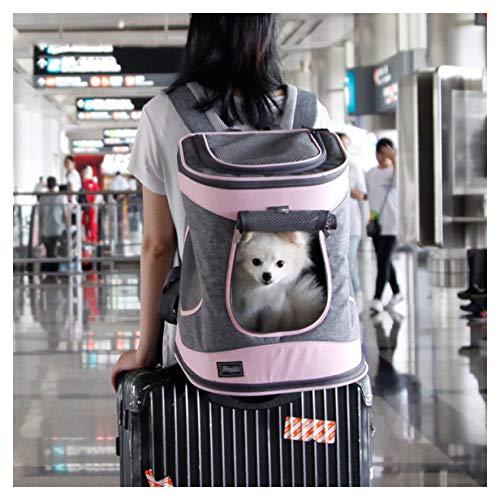 El Gato y el Perro Delante Mochila, una Bolsa Doble diseño del Hombro Mascota Correa for el Hombro, Adecuado for un Viaje en avión, Tren de Animales pequeños, de Vacaciones (Color : Green)