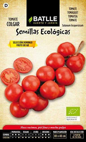 semillas-batlle-670506bols-tomate-domingo-eco