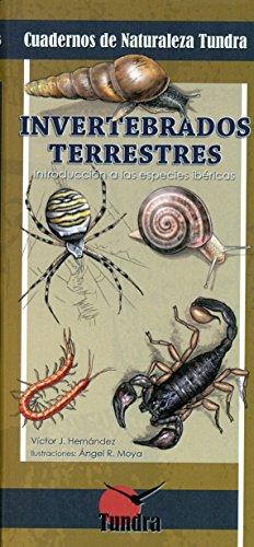 Invertebrados Terrestres por V. Hernandez