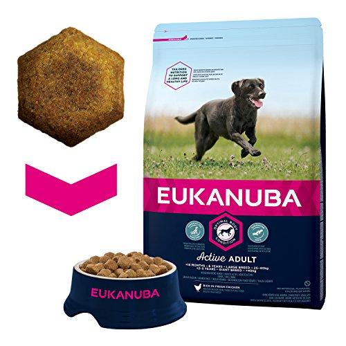 Eukanuba Adult Large Breed Trockenfutter (für erwachsene Hunde grosser Rassen, Premiumfutter mit Huhn), 3 kg Beutel - 4
