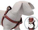 CROCI harnais réglable en Cuir Mylord Reg Bordeaux pour Chiens 35-60X15 mm