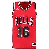 adidas Herren Trikot Int Swingman 16 Bulls, chicago bulls 1 (Rot/Schwarz), M, A59526