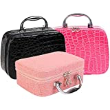 Finiviva Travel Cosmetic Toiletry Makeup Bag Box Organizer with Free Magnifying Compact Makeup Mirror (Multicolour)
