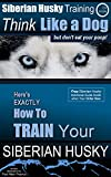 Siberian Husky, Siberian Husky Training A: Think Like a Dog, But Don't Eat Your Poop! | Breed Expert Siberian Husky Training: Here's EXACTLY How To TRAIN Your Siberian Husky