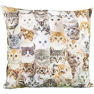 Kissen Quadrat Katzen allover (11480)