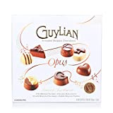 #2: Guylian Belgian Chocolates Opus Luxury Assortment Gift Box, 180g
