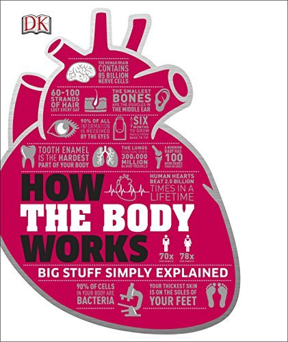 How the Body Works (Dk Knowledge) by DK: (2016-05-02)