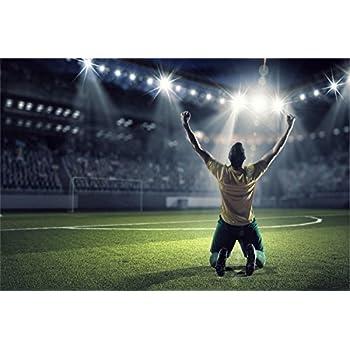 Amazon De Fussball Stadion Tor Jubel Spieler Xxl Wandbild