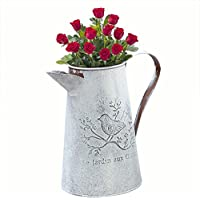 RONDA Botella de Agua Que salpica Jardín de Flores Jardín de la casa Hierro Flor de riego Jardín de Flores de época Botella de pote de riego de estaño