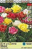 Tulipa Gefüllte Tulpen Prachtmischung 5 Blumenziebeln