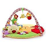 PUDDINGT Spielbogen mit Abnehmbaren Spielzeugen für Babys Spiel & Spaß von Geburt für Raupe Puppe