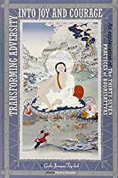 Transforming Adversity Into Joy And Courage: An Explanation Of The Thirty-Seven Practices Of Bodhisattvas: An Explanation of the 37 Practices of Bodhisattvas