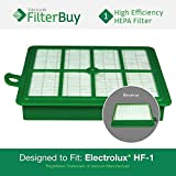 Eureka Electrolux Sanitaire Washable HF1 (HF-1) HF12 (HF-12) HEPA Filter, Part # 60286A