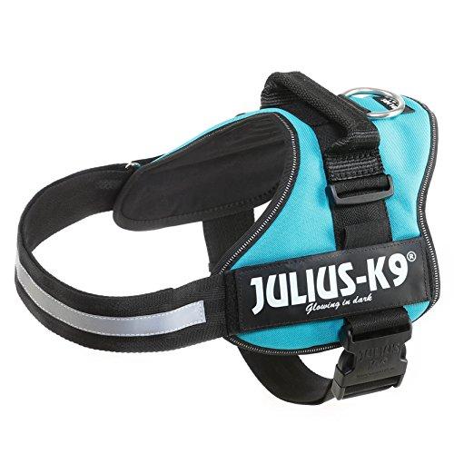 julius-k9-powerharness-size2-aquamarine