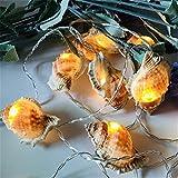 Luce A Led Shell Naturale Spiaggia Matrimonio Decorazione Natalizia Fatti A Mano Articoli Per Feste Conchiglia (Bianco) 3 Metri 20 Luci (Batteria)
